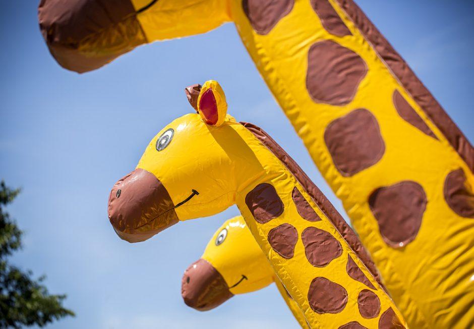 Multiplay Giraff