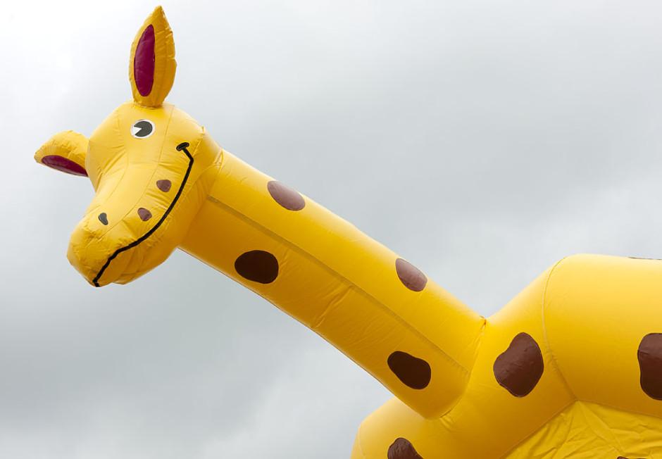 Vanlig Giraff