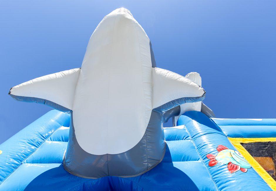 Multiplay Delfin