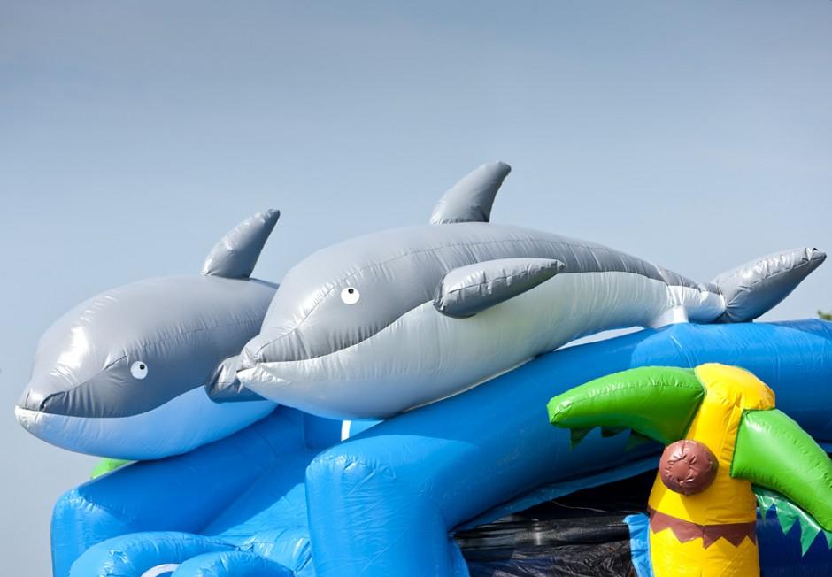 Challenge Delfin