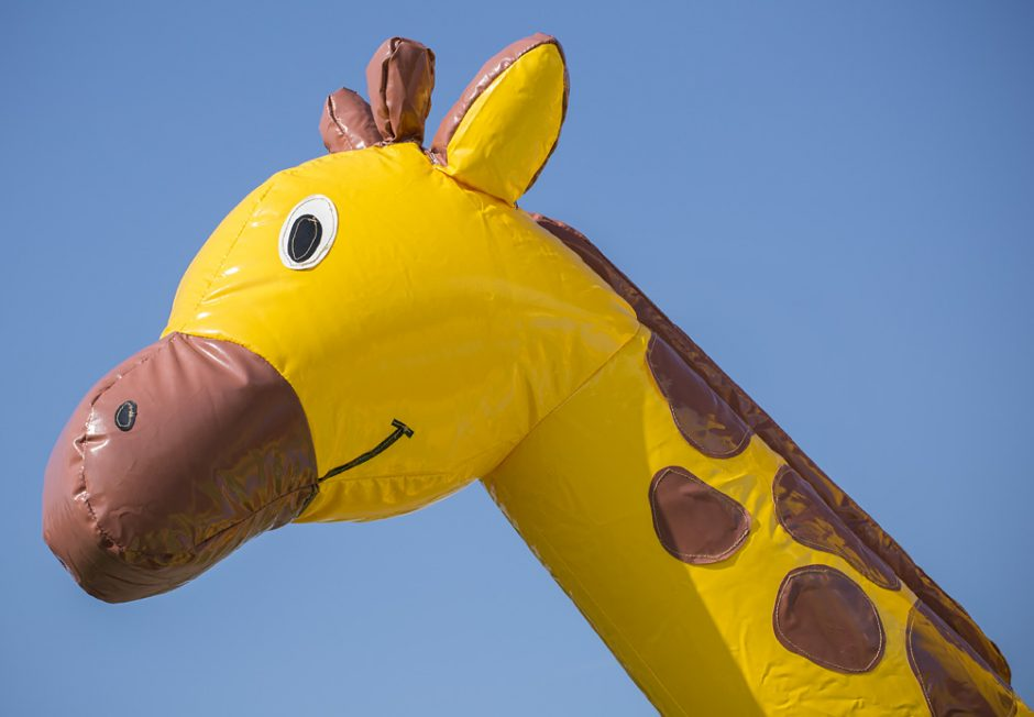Multifun Super Giraff