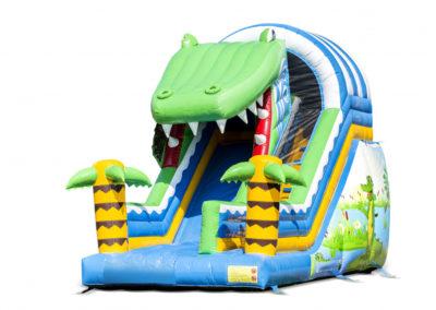 Krokodil Medium