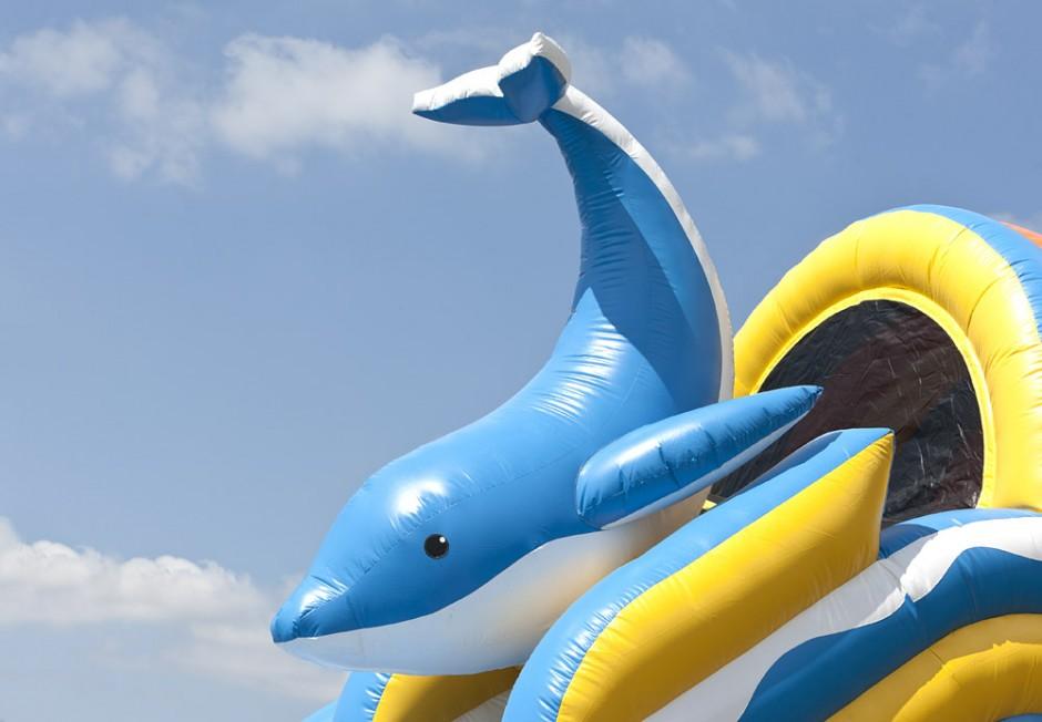 4-i-1 Delfin