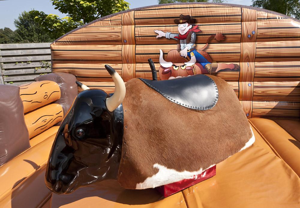 Rodeo Matta Western