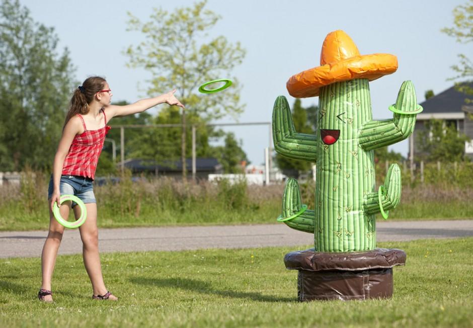 Kaktus Kastning